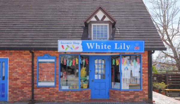 White Lily(ホワイトリリー)
